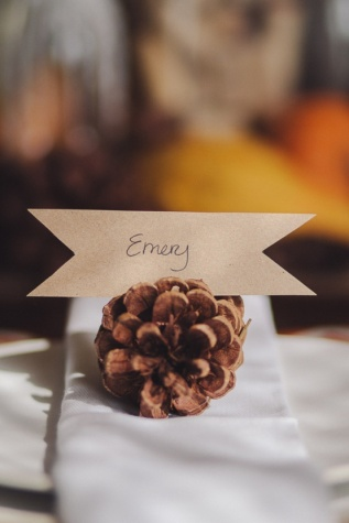 Pine cone place card holder (Events by Social Graces)